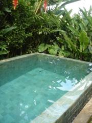 客室のプライベートプール